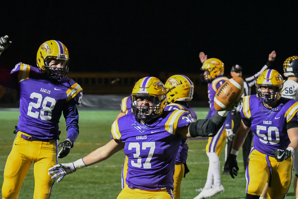 . Eric Bonzar�The Morning Journal Avon\'s Alex Waters (37) celebrates a fumble recovery against Olmsted Falls on Nov. 17.