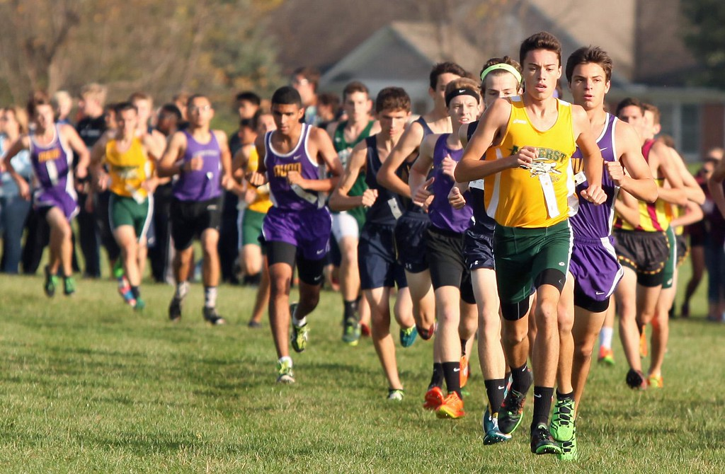 . Randy Meyers - The Morning Journal<br> Josh Hill of Amherst leads a long line of runners during the boys race at the Southwestern Conference Championships held at LCCC on Oct. 14.