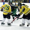 Randy Meyers - The Morning Journal<br /> Jaret Mead of Amherst tries to  control the puck during the second period of a holiday hockey tournament Dec. 26 in Parma.