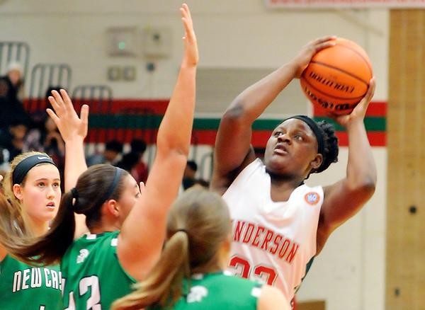John P. Cleary   The Herald Bulletin<br /> New Castle vs AHS in girls basketball.