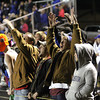 Charlestown fans celebrate one of the Pirates six first half touchdowns against Brownstown Central in the 3A Sectional championship. Staff photo by C.E. Branham