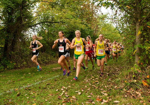 Runners make their way through the course at the beginning of the women's race during the Hoosier Hills Conference cross country meet at Prosser on Saturday morning. Staff photo by Christopher Fryer