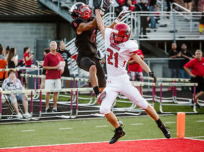 New Albany's Devon Gummer makes a flying catch for a touchdown uring the Bulldogs' game against Madison on Friday. Staff Photos By Josh Hicks