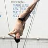 diving finals