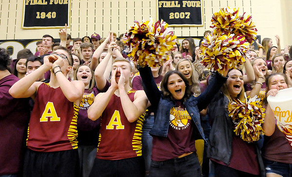 Don Knight | The Herald Bulletin<br /> Alexandria student section cheers for the Tigers as they face Covington in the first round of the regional at Lapel on Saturday.
