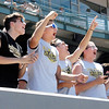 John P. Cleary   The Herald Bulletin<br /> Fans cheered Daleville on to a class A State Championship.