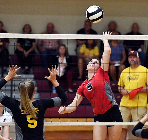 John P. Cleary   The Herald Bulletin<br /> Frankton vs Alexandria in volleyball.