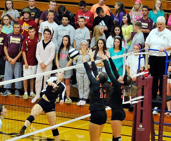 John P. Cleary | The Herald Bulletin <br /> Alexandria Tigers vs Wapahani Raiders in volleyball.