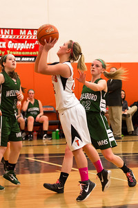 14 01 28 Towanda v Wellsboro GBB-015