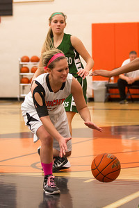 14 01 28 Towanda v Wellsboro GBB-091