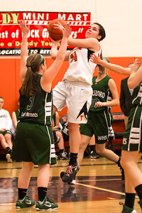 14 01 28 Towanda v Wellsboro GBB-025