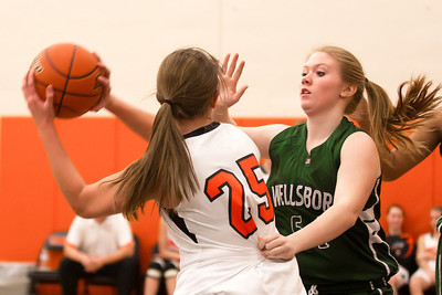14 01 28 Towanda v Wellsboro GBB-106