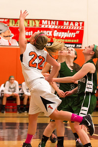 14 01 28 Towanda v Wellsboro GBB-016