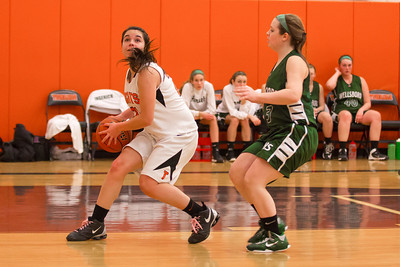 14 01 28 Towanda v Wellsboro GBB-013