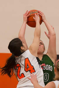 14 01 28 Towanda v Wellsboro GBB-004