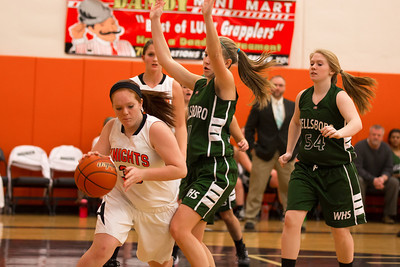 14 01 28 Towanda v Wellsboro GBB-019