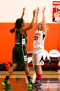 14 01 28 Towanda v Wellsboro GBB-042
