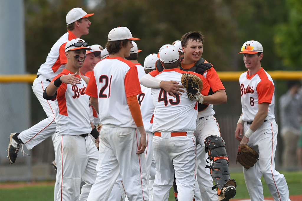 . Eric Bonzar�The Morning Journal The Padua Bruins celebrate their 1-0 district finals win over the Bay Rockets, May 20, 2016.