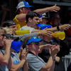 Eric Bonzar—The Morning Journal<br /> Gahanna Lincoln Golden Lions fans cheer on their team in the top of the seventh inning.