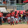 Eric Bonzar—The Morning Journal<br /> The Elyria Pioneers softball team celebrate their 6-4, D-I state semifinal win over the Gahanna Lincoln Golden Lions, June 1, 2017.