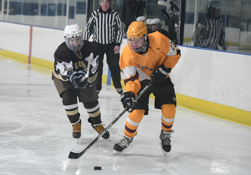 . Eric Bonzar�The Morning Journal Avon Lake\'s Timothy Lubertozzi (13) and Brush defender Alec Kornet (4) battle for control of the puck.