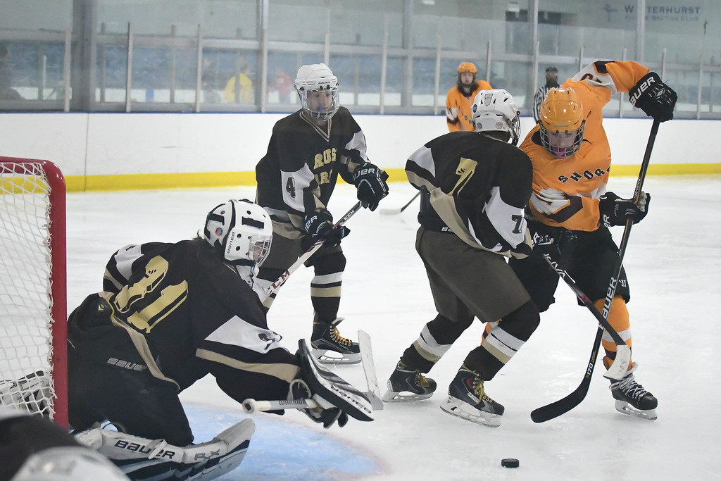 . Eric Bonzar�The Morning Journal Avon Lake forward Timothy Lubertozzi (13) moves the puck around Brush defender Demetrius Jofferion (7) as goalie Mike Kornet (31) dives towards it.