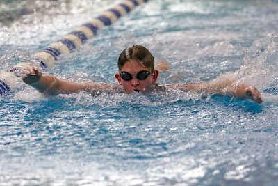 Twinsburg High School Swimming and Diving
