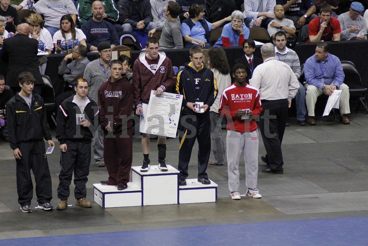 Placers 2011 (2)