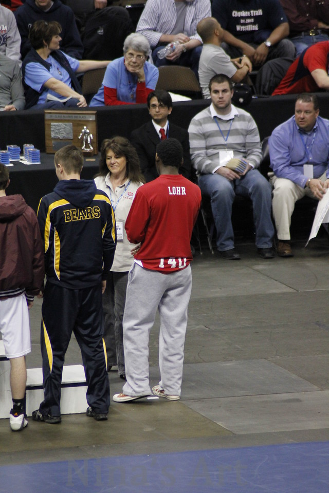 Placers 2011 (1)