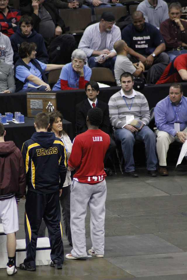 Placers 2011
