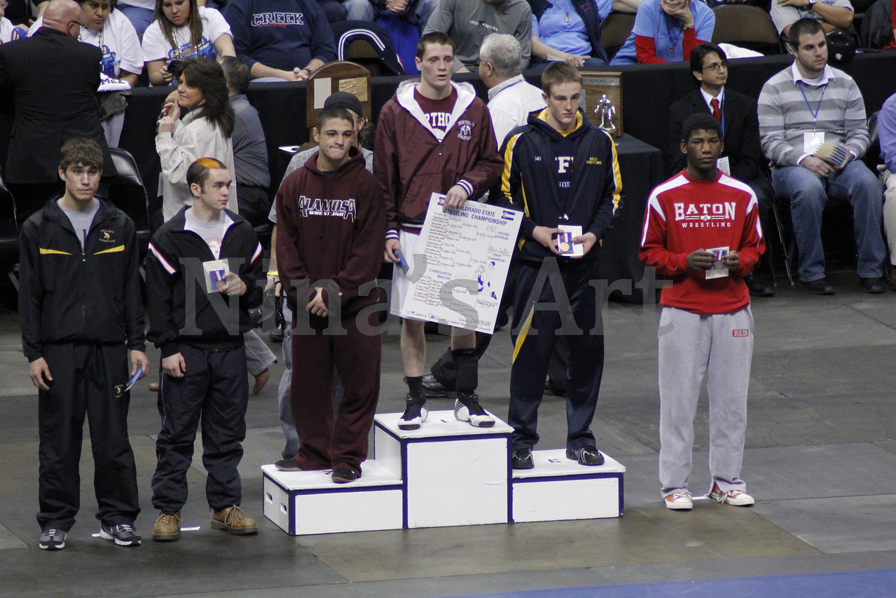 Placers 2011 (4)