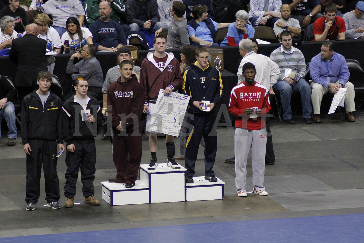 Placers 2011 (3)