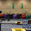 DAC_Gymnastics_Meet_2011 (3)