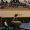 VHS Gymnastics Regionals 2012 (19)