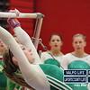 Valpo-Portage-Gymnastics 028