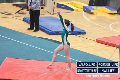 VHS-Gymnastics-@-2013-Regionals_jb-014