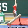2013-Gymnastics-Regionals-otherschools_jb-412