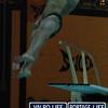 LaPorte_Conference_Dive_Meet_December15 jpg  (110)