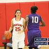 Girls-Basketball-Sectionals-2-6-13 409