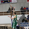 vhs-boys-basketball-sectional-2013-merrillville (16)