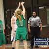 Girls-Basketball-Sectionals-2-6-13 032