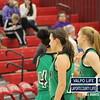 Girls-Basketball-Sectionals-2-6-13 008