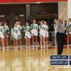 Girls-Basketball-Sectionals-2-6-13 034