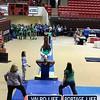 VHS_Gymnastics_2013_State_Championship-jb1-009