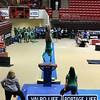 VHS_Gymnastics_2013_State_Championship-jb1-006
