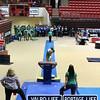 VHS_Gymnastics_2013_State_Championship-jb1-005