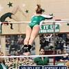 VHS_Gymnastics_Invite_1-12-2013