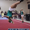 VHS-GYMNASTICS-@-SECTIONALS-2013_jb (19)