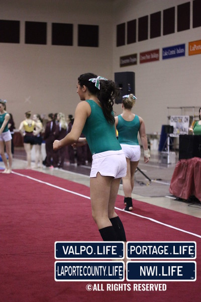 VHS-GYMNASTICS-@-SECTIONALS-2013_jb (6)