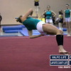 VHS-GYMNASTICS-@-SECTIONALS-2013_jb (11)